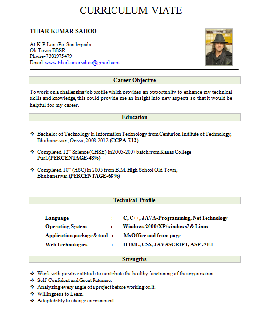 Fresher Resume Best Format Download In Ms Word Cv Sample